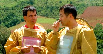 ブラジルの養蜂家との協力
