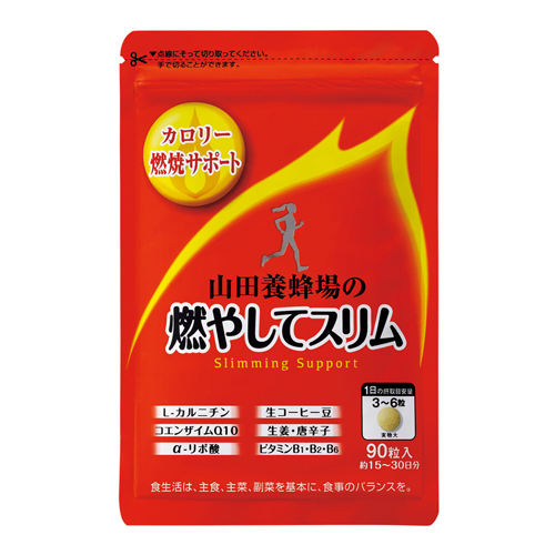 Slimming Support  〈in a bag〉