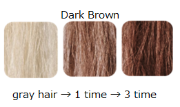 Hair Color Treatment <Dark Brown>